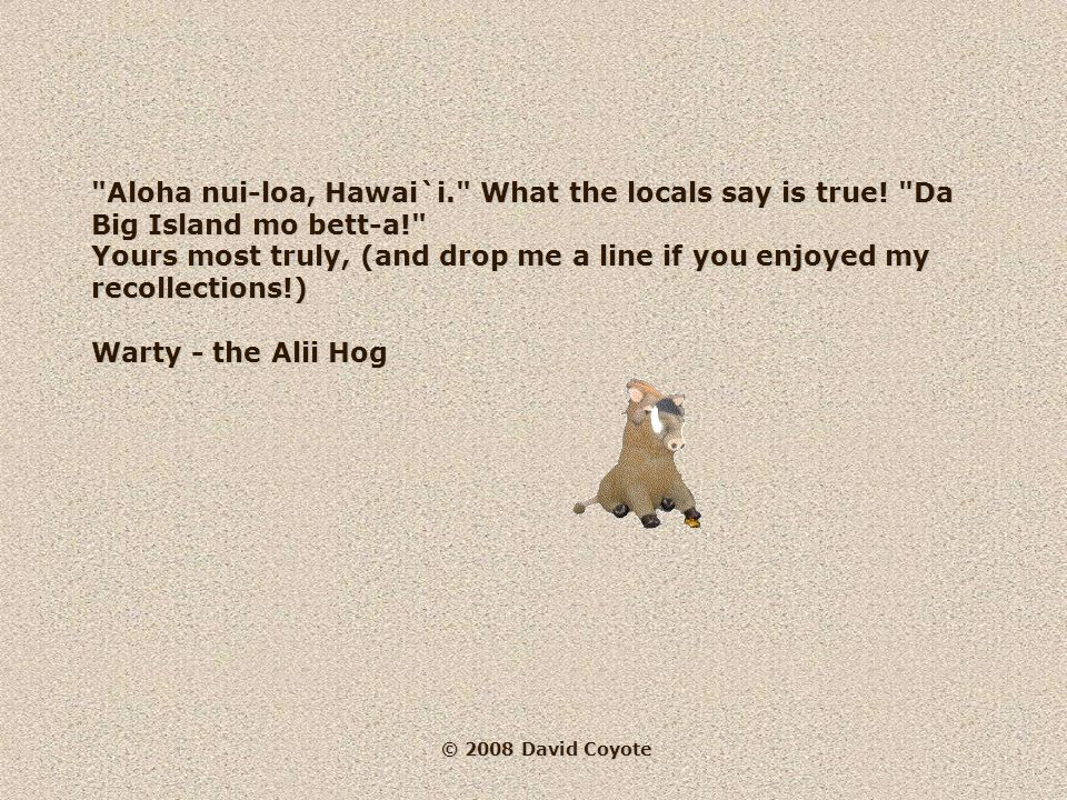 © 2008 David Coyote I won't forget the beauty, the mystery of land and sea...just as I'm sure that Hawai`i and its beautiful people won't forget me!