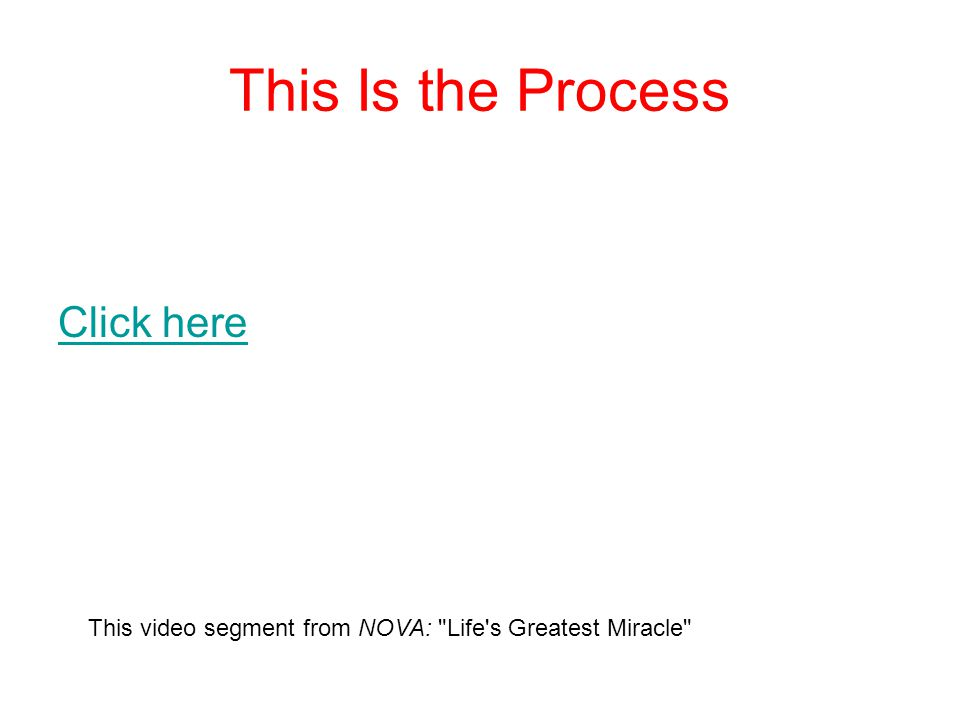 This Is the Process Click here This video segment from NOVA: Life s Greatest Miracle