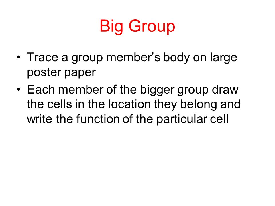 Big Group Trace a group member's body on large poster paper Each member of the bigger group draw the cells in the location they belong and write the function of the particular cell
