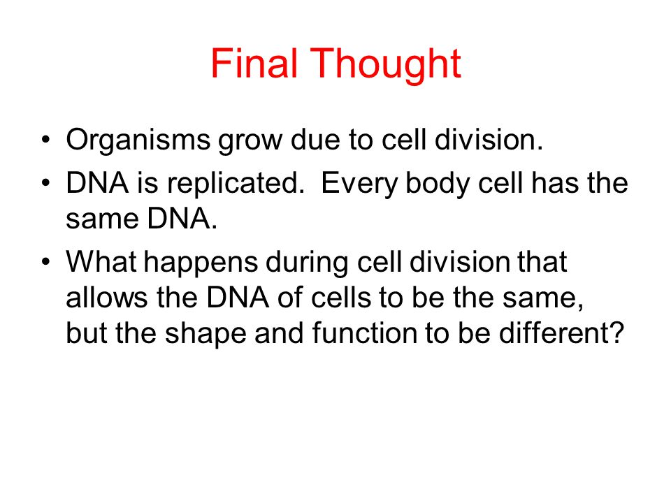 Final Thought Organisms grow due to cell division.