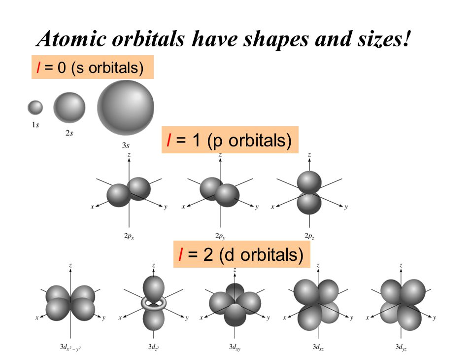 Atomic orbitals have shapes and sizes! l = 0 (s orbitals) l = 1 (p orbitals) l = 2 (d orbitals)