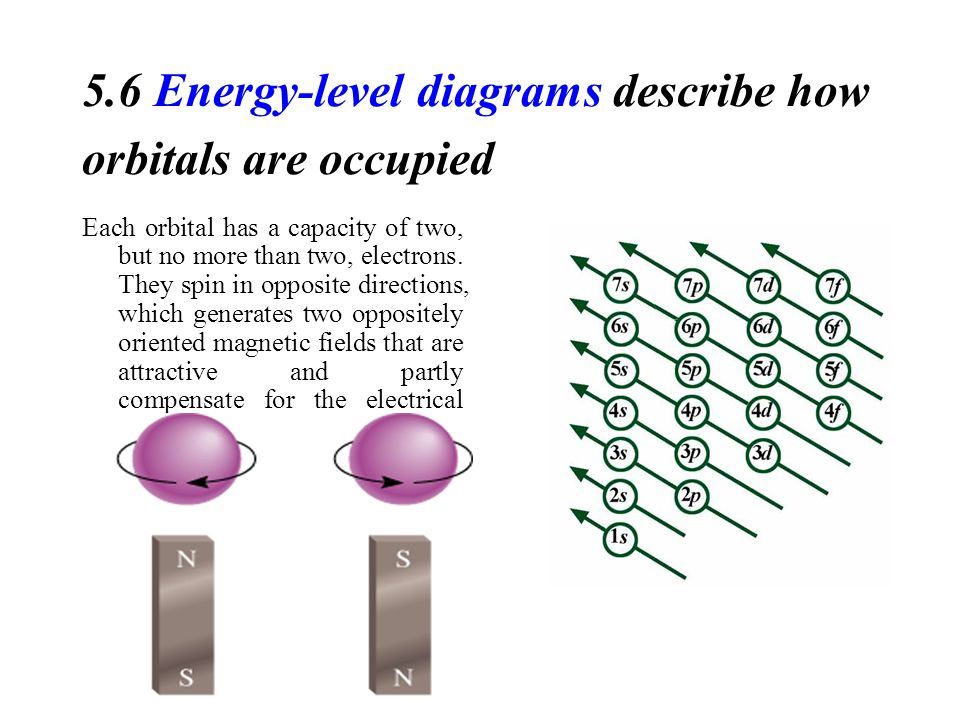 5.6 Energy-level diagrams describe how orbitals are occupied Each orbital has a capacity of two, but no more than two, electrons.
