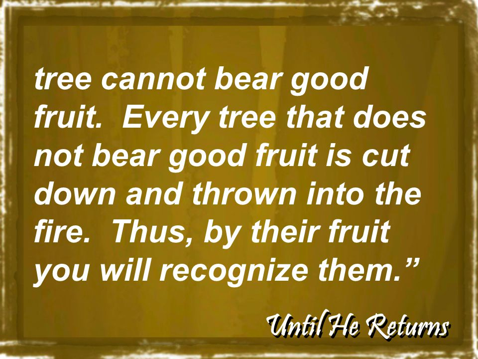 Until He Returns tree cannot bear good fruit. Every tree that does not bear good fruit is cut down and thrown into the fire. Thus, by their fruit you