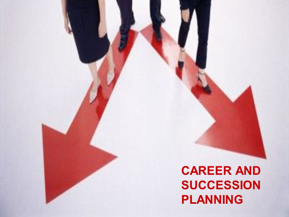 The concept of career A career comprises of a series of work related activities, that offer continuity, order and meaning to a person's life.
