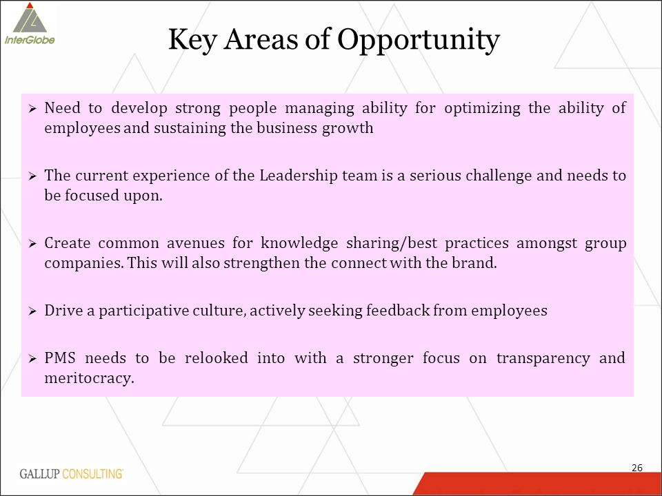 Key Areas of Opportunity  Need to develop strong people managing ability for optimizing the ability of employees and sustaining the business growth  The current experience of the Leadership team is a serious challenge and needs to be focused upon.