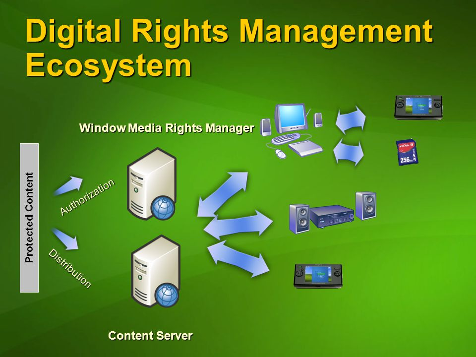 Digital Rights Management Ecosystem Distribution Authorization Protected Content Window Media Rights Manager Content Server