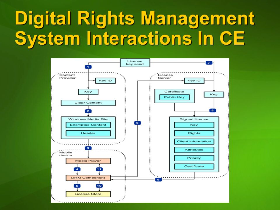 Digital Rights Management System Interactions In CE