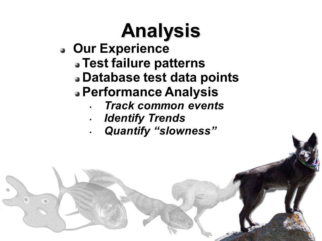 Our Experience Test failure patterns Database test data points Performance Analysis Track common events Identify Trends Quantify slowness Analysis