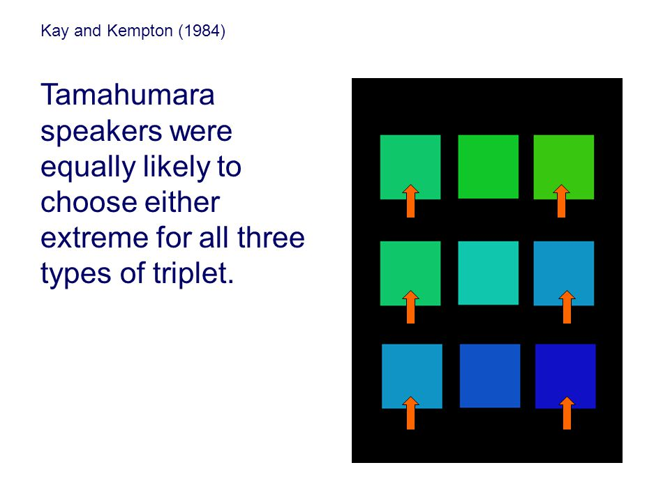 Kay and Kempton (1984) Tamahumara speakers were equally likely to choose either extreme for all three types of triplet.