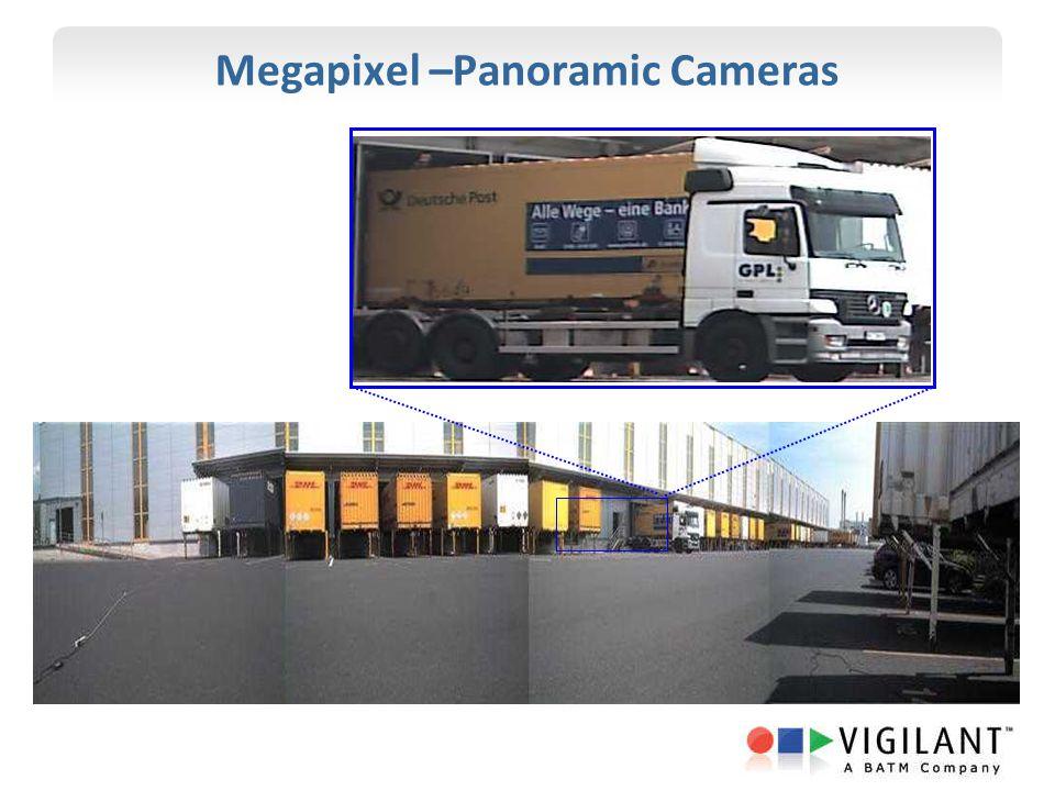 Megapixel –Panoramic Cameras