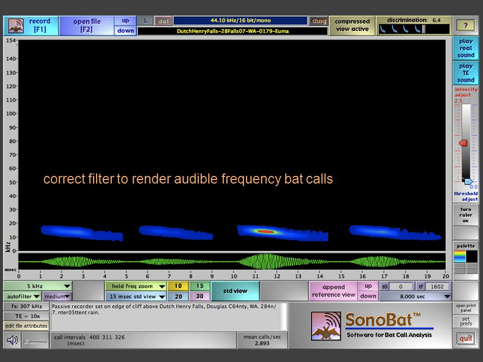 correct filter to render audible frequency bat calls