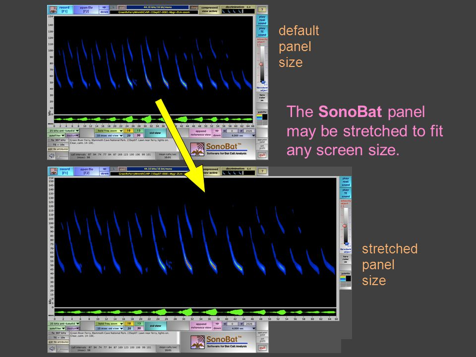default panel size stretched panel size The SonoBat panel may be stretched to fit any screen size.