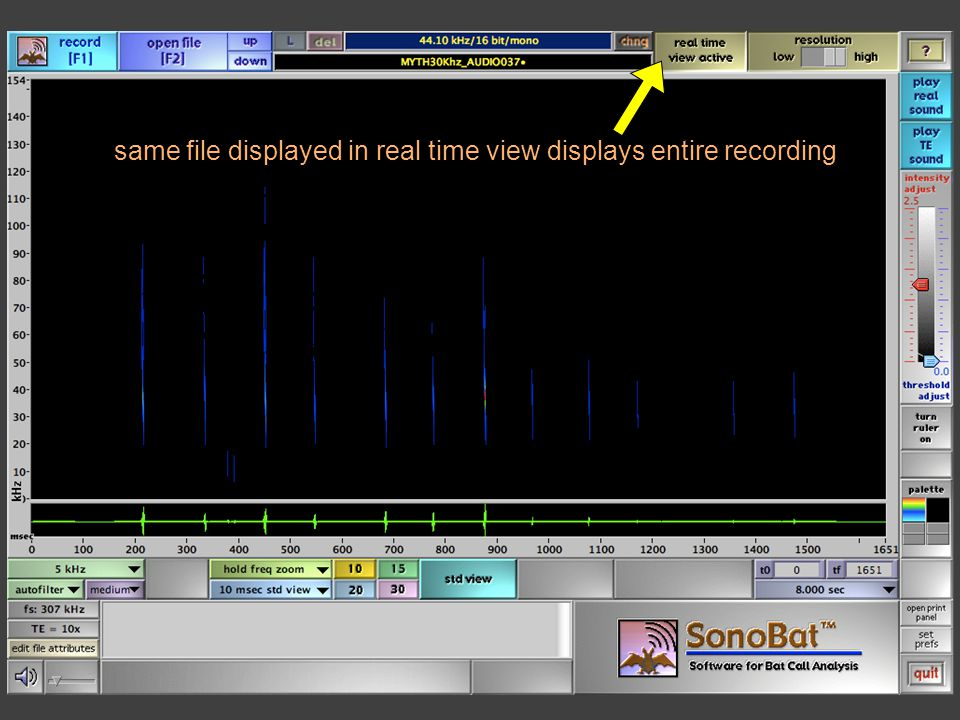 same file displayed in real time view displays entire recording