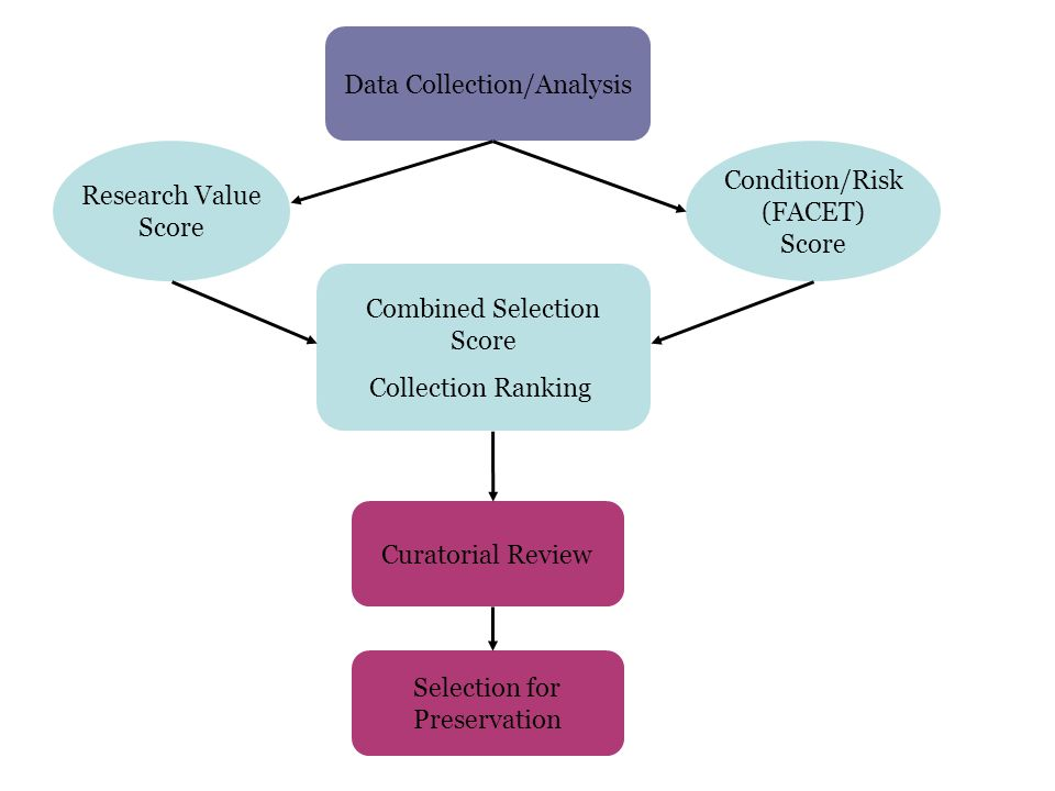 Data Collection/Analysis Research Value Score Condition/Risk (FACET) Score Combined Selection Score Collection Ranking Curatorial Review Selection for