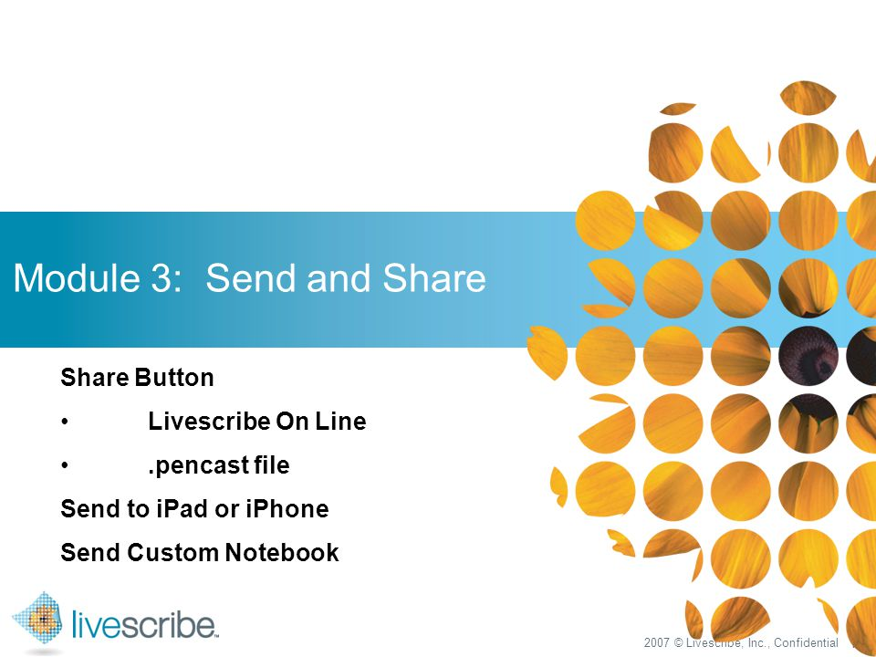 2007 © Livescribe, Inc., Confidential 17 Module 3: Send and Share Share Button Livescribe On Line.pencast file Send to iPad or iPhone Send Custom Notebook