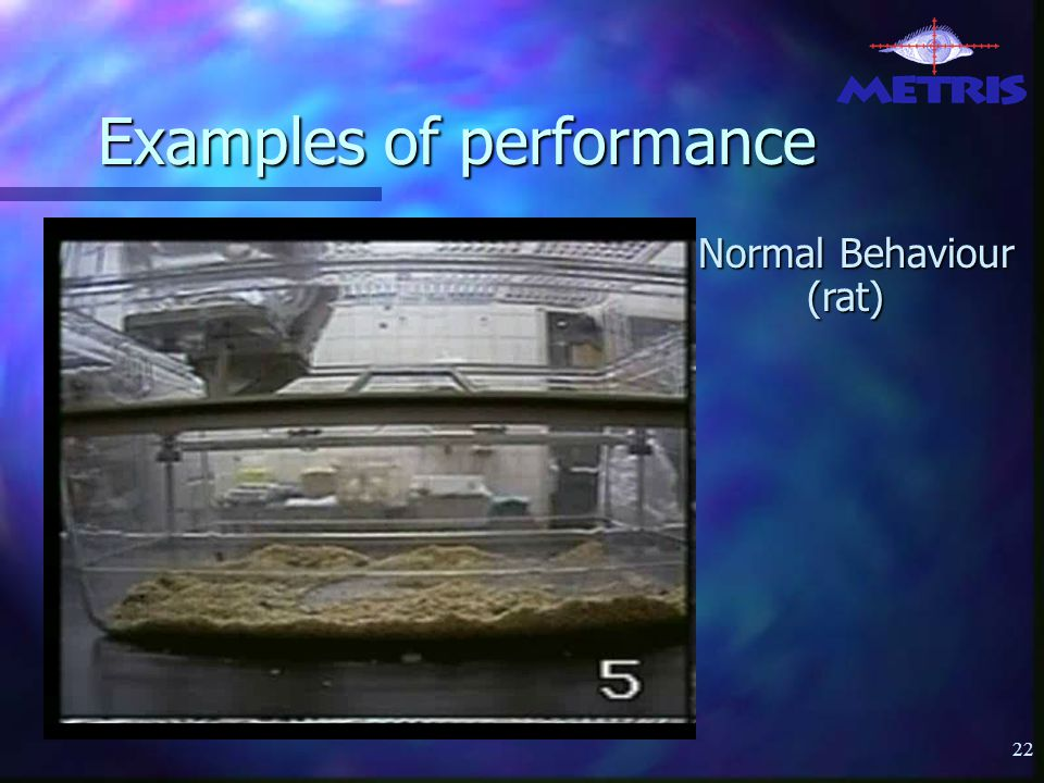 22 Examples of performance Normal Behaviour (rat)