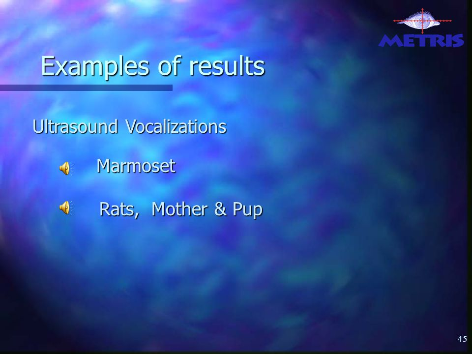 45 Examples of results Marmoset Rats, Mother & Pup Ultrasound Vocalizations