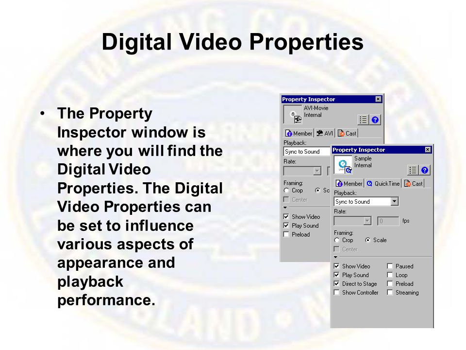 Digital Video Properties The Property Inspector window is where you will find the Digital Video Properties. The Digital Video Properties can be set to