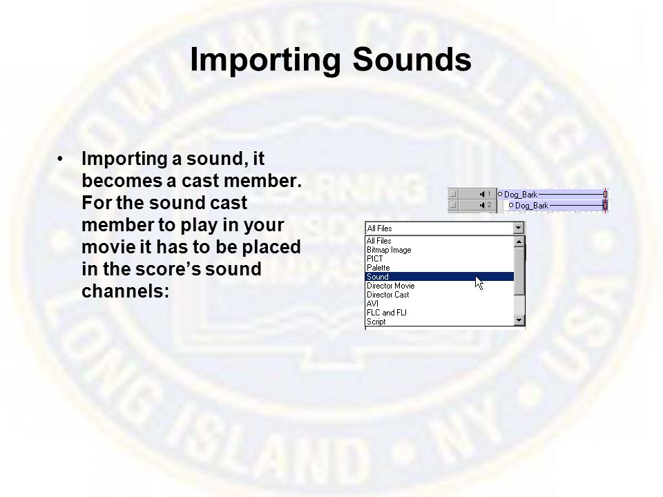 Importing Sounds Importing a sound, it becomes a cast member.