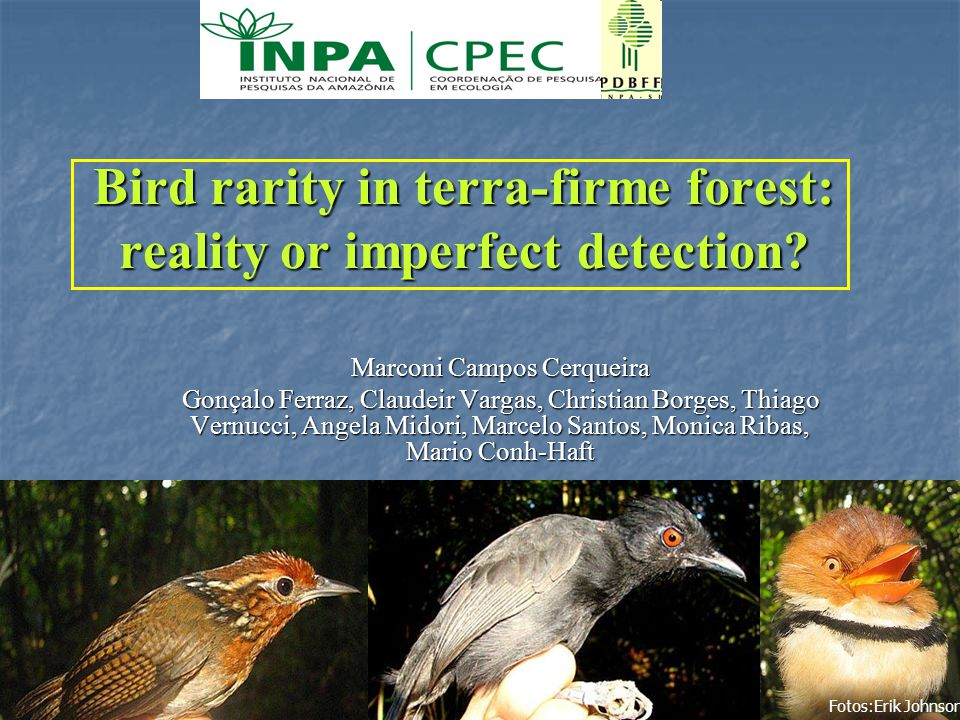 1 Bird rarity in terra-firme forest: reality or imperfect detection? Marconi Campos Cerqueira Gonçalo Ferraz, Claudeir Vargas, Christian Borges, Thiag