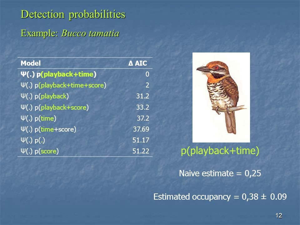 12 Detection probabilities Example: Bucco tamatia ModelΔ AIC Ψ(.) p(playback+time)0 Ψ(.) p(playback+time+score)2 Ψ(.) p(playback)31.2 Ψ(.) p(playback+score)33.2 Ψ(.) p(time)37.2 Ψ(.) p(time+score)37.69 Ψ(.) p(.)51.17 Ψ(.) p(score)51.22 p(playback+time) Naive estimate = 0,25 Estimated occupancy = 0,38 ± 0.09