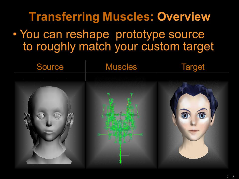 Transferring Muscles: Overview SourceMusclesTarget You can reshape prototype source to roughly match your custom target