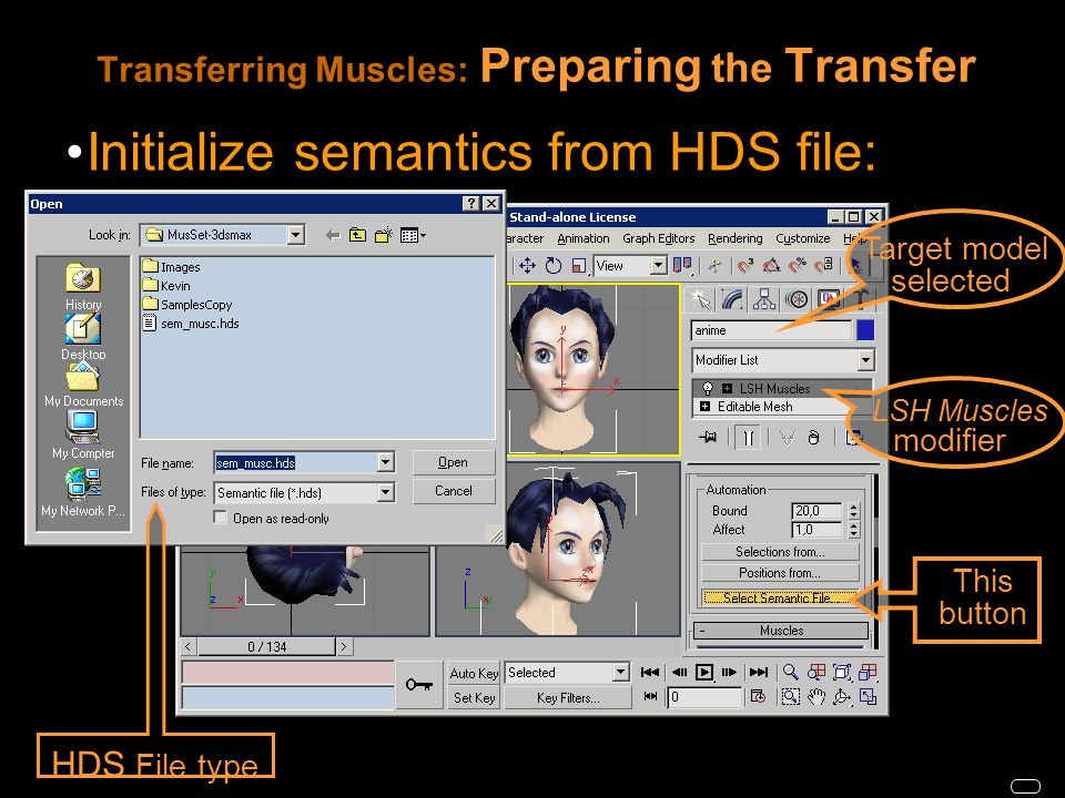 Transferring Muscles: Preparing the Transfer Initialize semantics from HDS file: HDS File type LSH Muscles modifier Target model selected This button