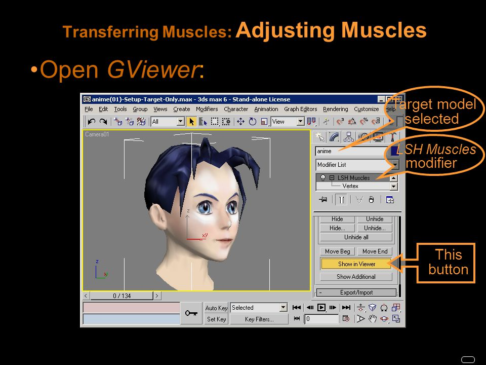 Transferring Muscles: Adjusting Muscles Open GViewer: This button LSH Muscles modifier Target model selected