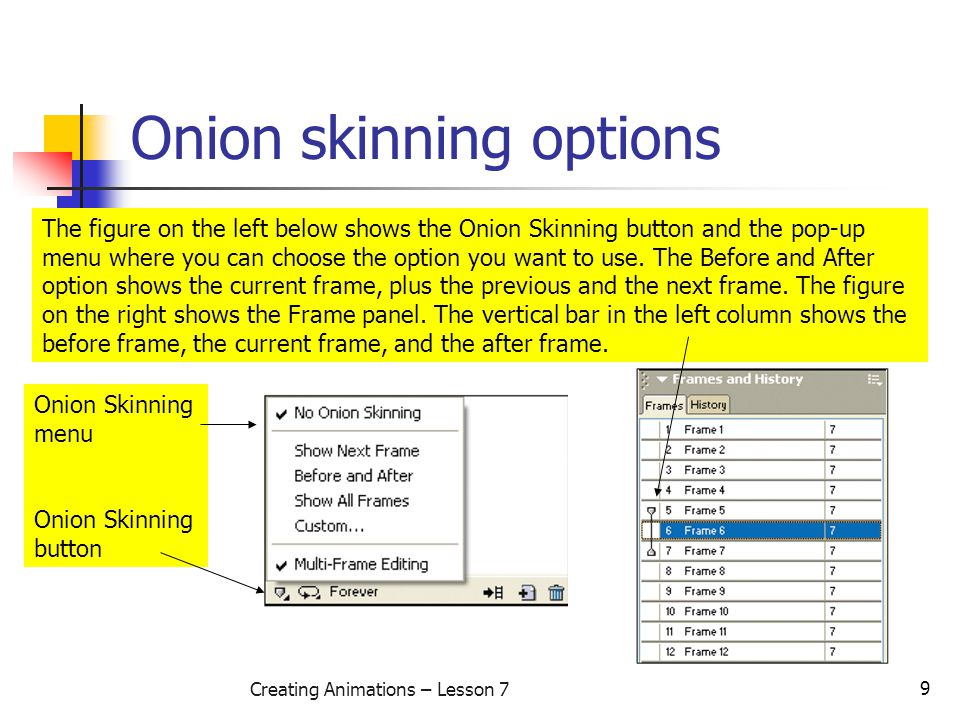 9 Creating Animations – Lesson 7 Onion skinning options The figure on the left below shows the Onion Skinning button and the pop-up menu where you can