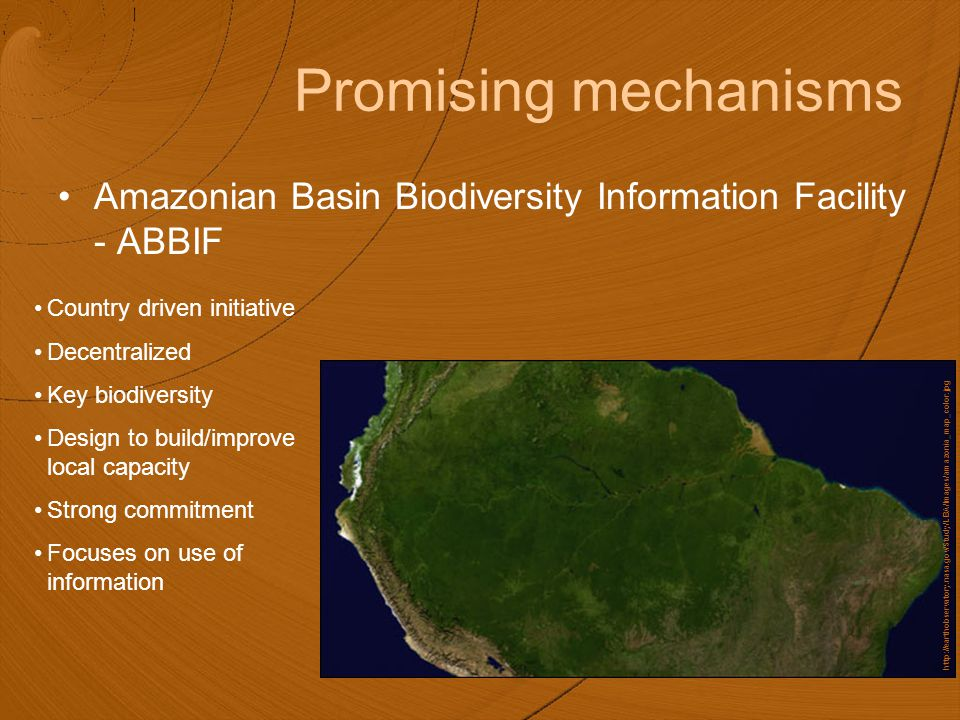 Promising mechanisms Amazonian Basin Biodiversity Information Facility - ABBIF Country driven initiative Decentralized Key biodiversity Design to build/improve local capacity Strong commitment Focuses on use of information http://earthobservatory.nasa.gov/Study/LBA/Images/amazonia_map_color.jpg