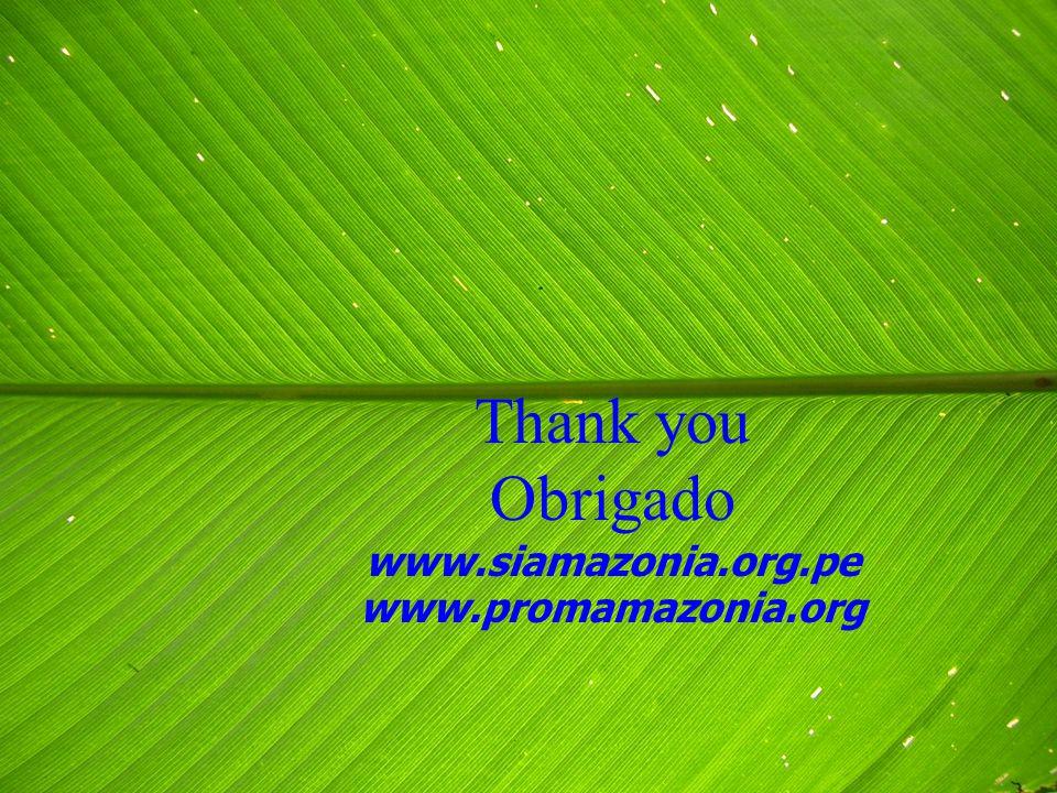 Thank you Obrigado www.siamazonia.org.pe www.promamazonia.org