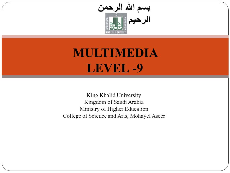 1 Introduction to Computer Science بسم الله الرحمن الرحيم MULTIMEDIA LEVEL -9 King Khalid University Kingdom of Saudi Arabia Ministry of Higher Education College of Science and Arts, Mohayel Aseer