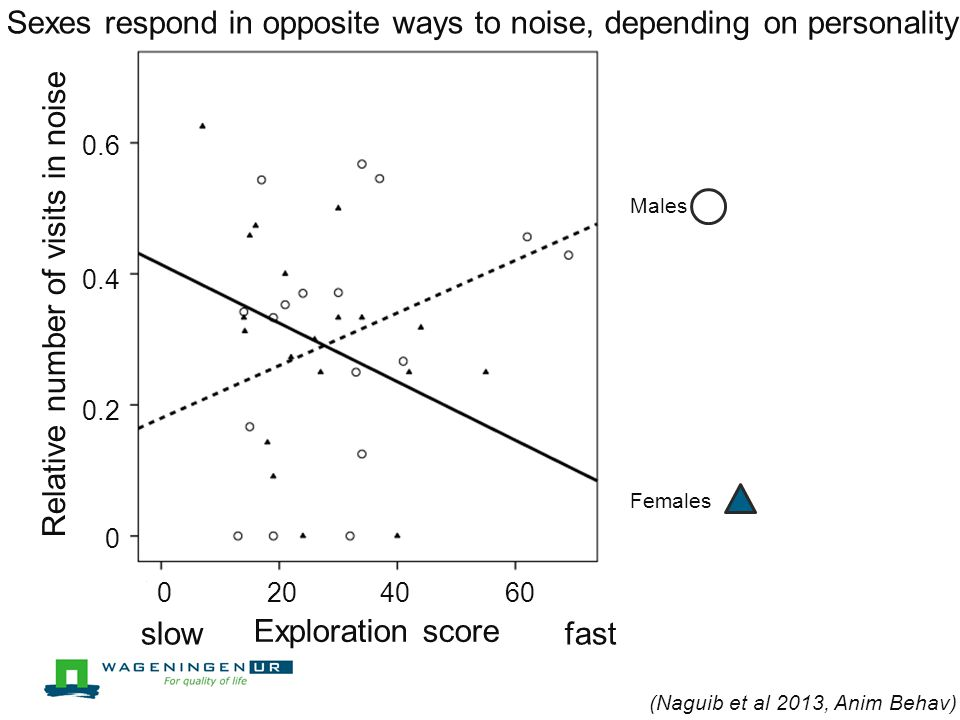 Parent (Naguib et al 2013, Anim Behav) Disturb only Disturb and mask Exploration score Latency to first visit in noise