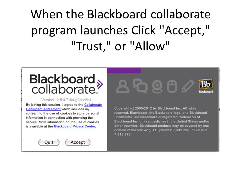 When the Blackboard collaborate program launches Click Accept, Trust, or Allow