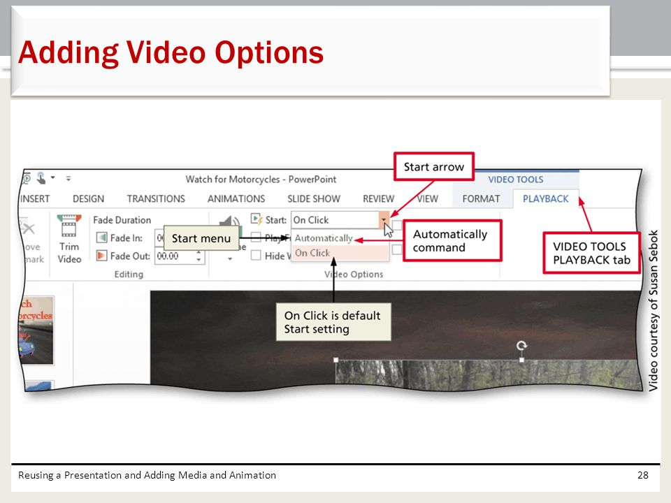 Reusing a Presentation and Adding Media and Animation28 Adding Video Options