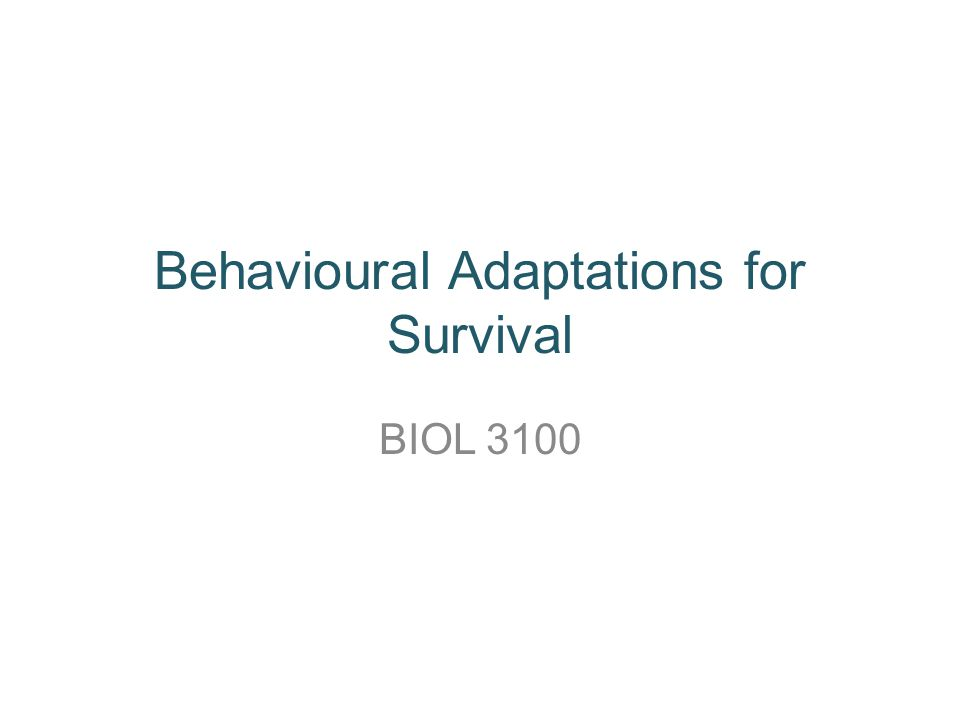 Behavioural Adaptations for Survival BIOL 3100