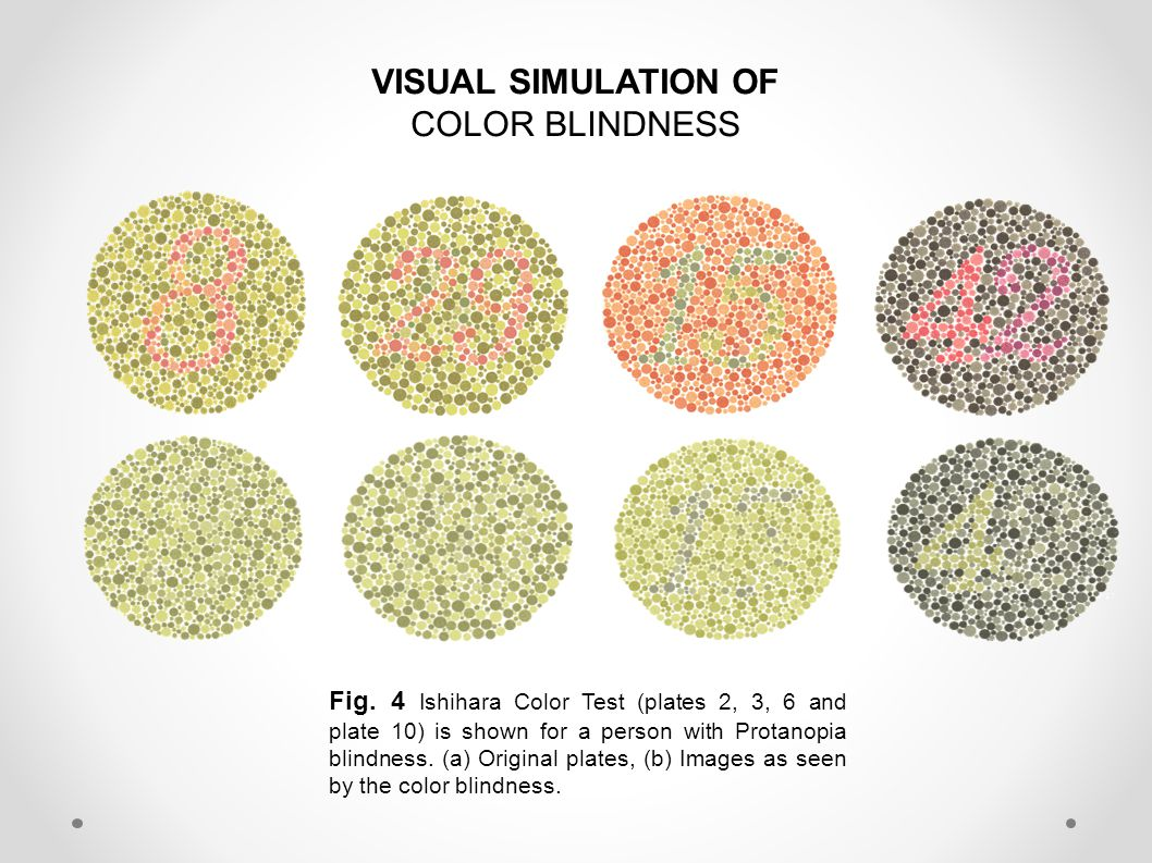 VISUAL SIMULATION OF COLOR BLINDNESS Fig.