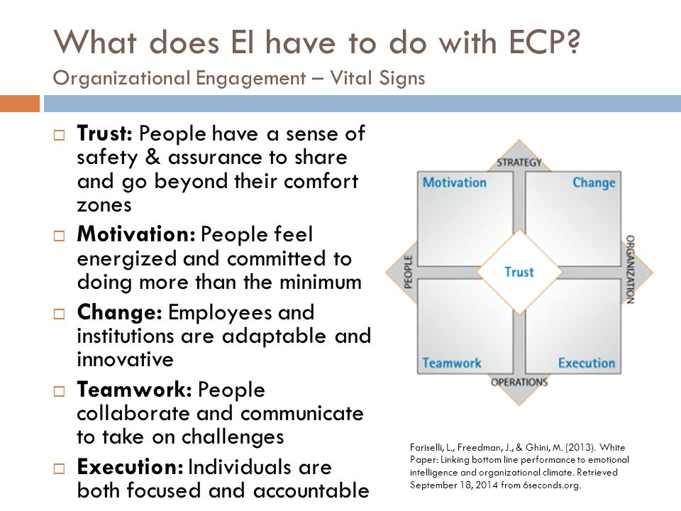 What does EI have to do with ECP.