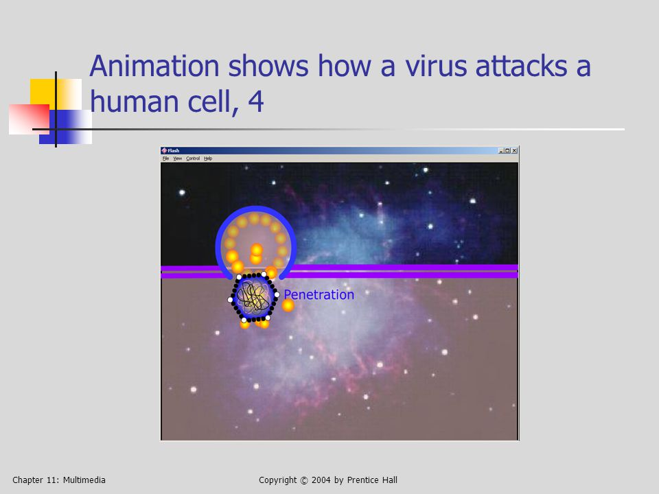 Chapter 11: MultimediaCopyright © 2004 by Prentice Hall Animation shows how a virus attacks a human cell, 4