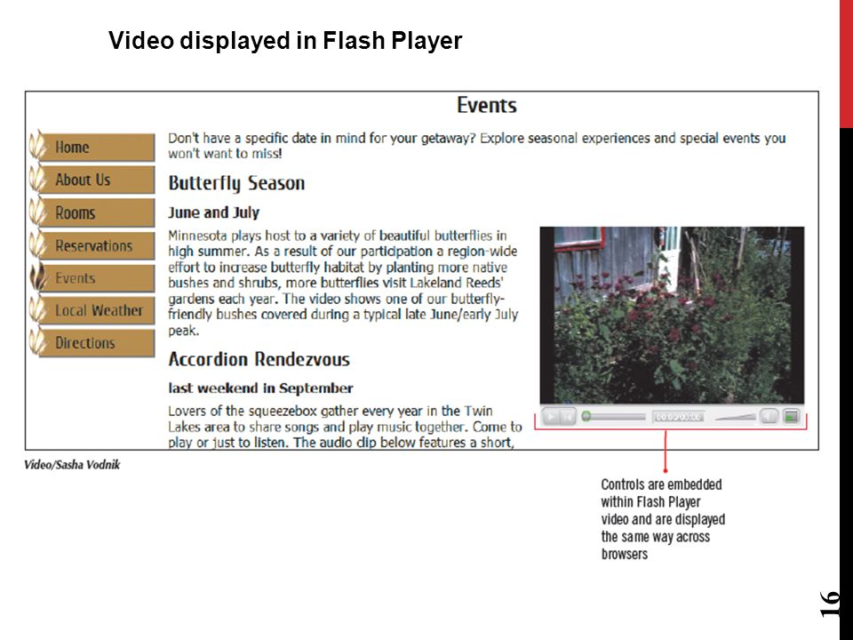 15 Code for browsers supporting the Adobe Flash version of the video