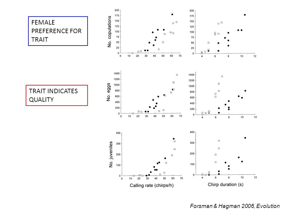 FEMALE PREFERENCE FOR TRAIT TRAIT INDICATES QUALITY Forsman & Hagman 2006, Evolution