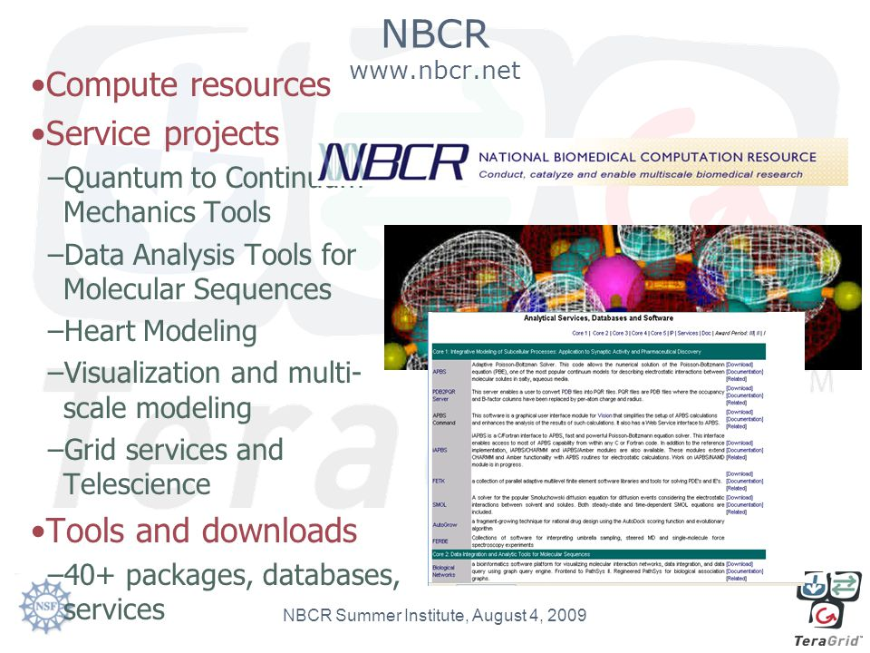 NBCR www.nbcr.net Compute resources Service projects –Quantum to Continuum Mechanics Tools –Data Analysis Tools for Molecular Sequences –Heart Modelin