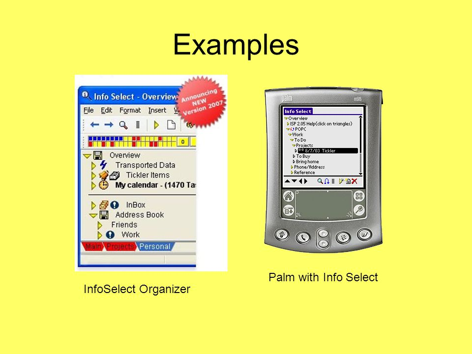 Examples InfoSelect Organizer Palm with Info Select