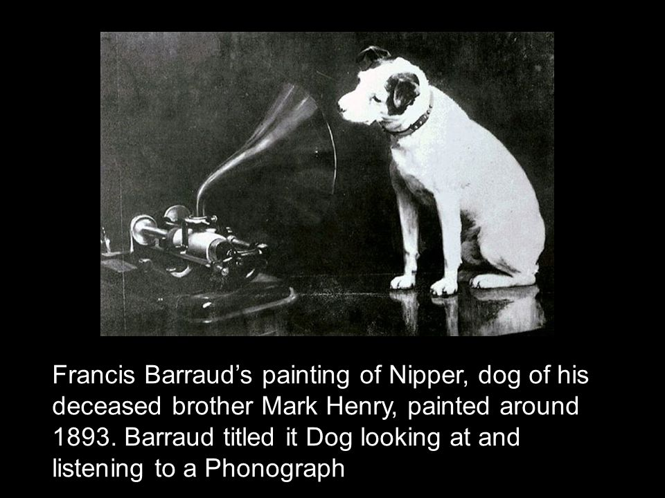 Francis Barraud's painting of Nipper, dog of his deceased brother Mark Henry, painted around 1893.