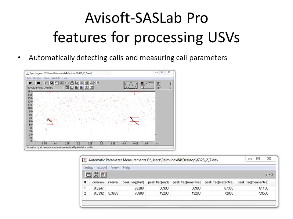 Avisoft-SASLab Pro features for processing USVs Automatically detecting calls and measuring call parameters