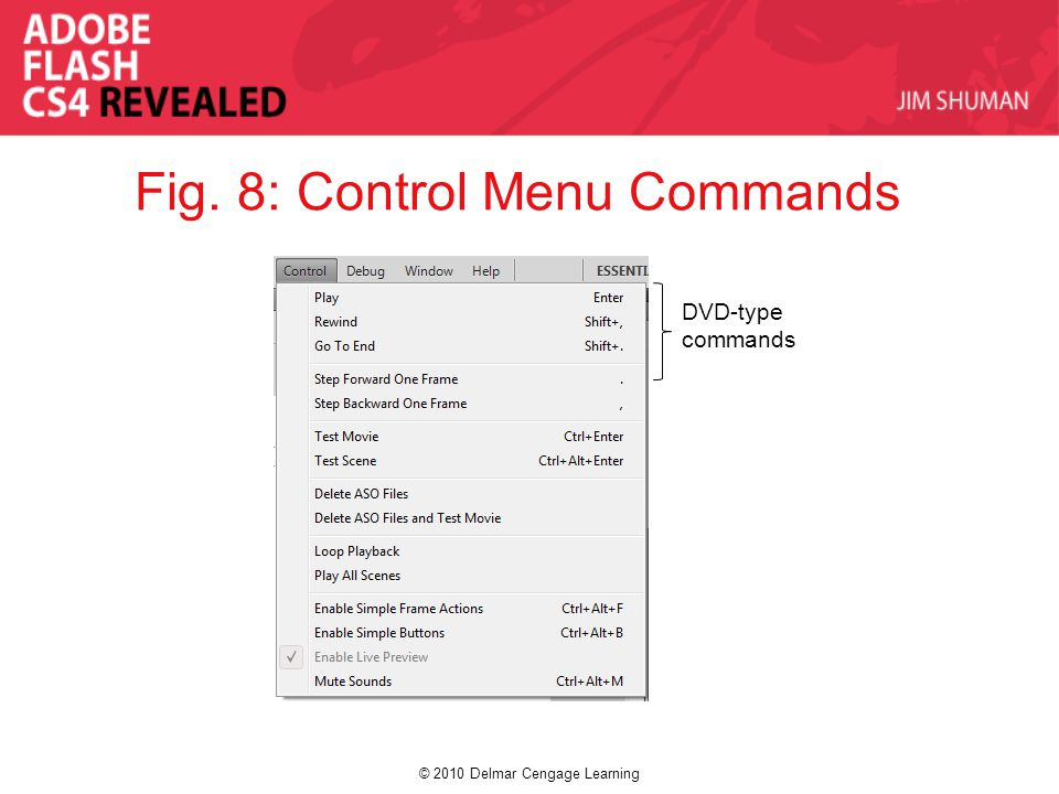 © 2010 Delmar Cengage Learning Fig. 8: Control Menu Commands DVD-type commands