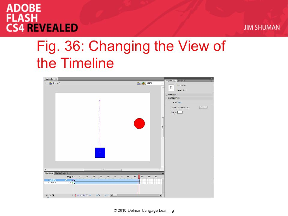 © 2010 Delmar Cengage Learning Fig. 36: Changing the View of the Timeline