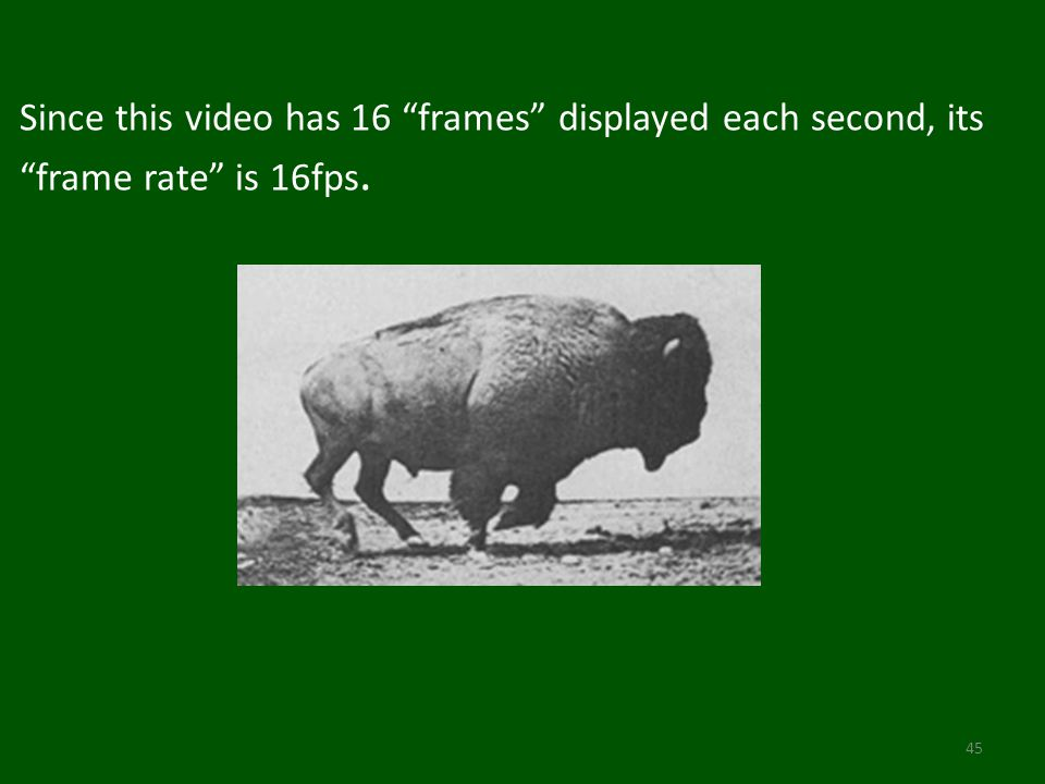 Since this video has 16 frames displayed each second, its frame rate is 16fps. 45