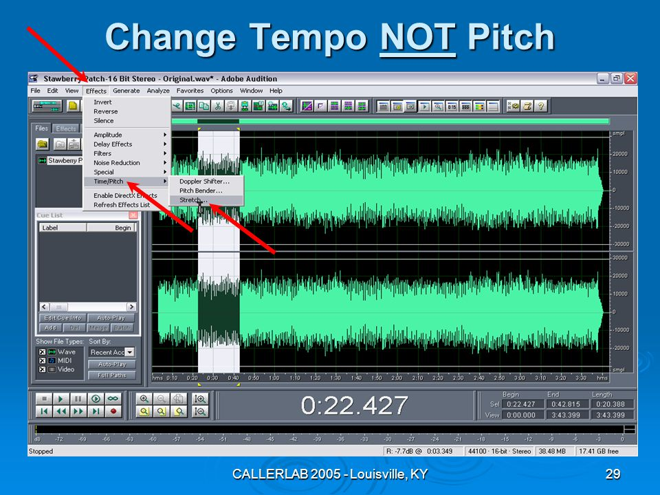 CALLERLAB 2005 - Louisville, KY29 Change Tempo NOT Pitch