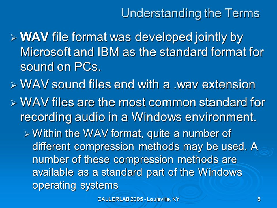 CALLERLAB 2005 - Louisville, KY5 Understanding the Terms  WAV file format was developed jointly by Microsoft and IBM as the standard format for sound on PCs.